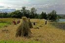 Барышни-крестьянки на острове Кижи